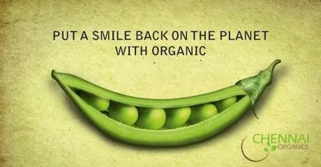 Chennai_organics